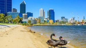 perth business listings